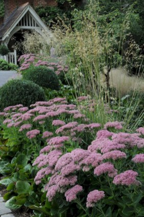 Inspiring Planting Combination Ideas For Your Garden 19