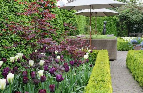 Inspiring Planting Combination Ideas For Your Garden 41