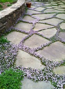 Stylish Stepping Stone Pathway Décor Ideas 01