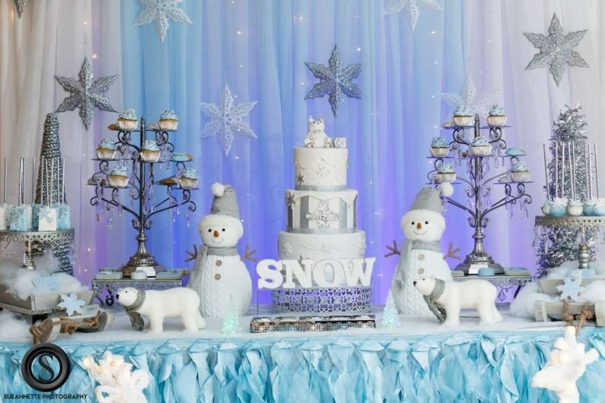 Charming Winter Themed Baby Shower Decoration Ideas38
