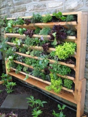 Stylish Vertical Garden Ideas For House21