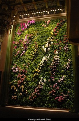 Stylish Vertical Garden Ideas For House28