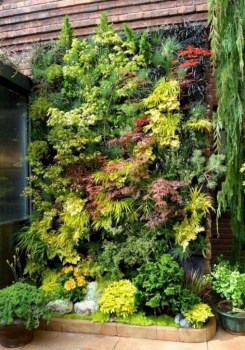 Stylish Vertical Garden Ideas For House39