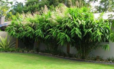 Wonderful Grass Landscaping Ideas For Home Yard13
