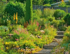 Wonderful Grass Landscaping Ideas For Home Yard41