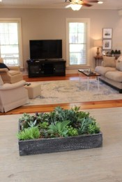 Astonishing Succulent Decoration Ideas For Living Room 10