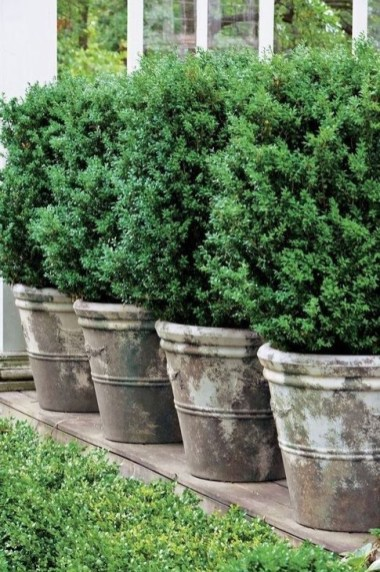 Gorgeous Landscaping Design Ideas For Beginners 26