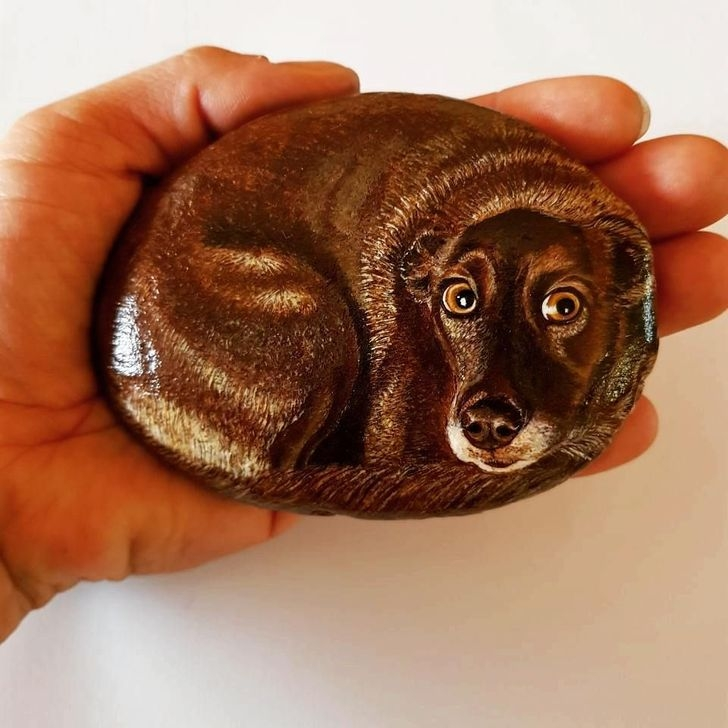Splendid Diy Projects Painted Rocks Animals Dogs Ideas For Summer 01