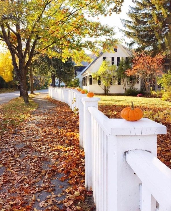 Unordinary Home Decoration Ideas For Fall To Try 01
