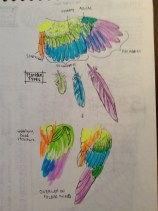 Bird wing & feathers study (with highlighter!)