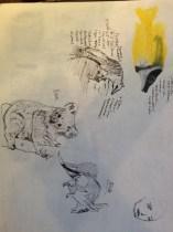 Animals in pen practice
