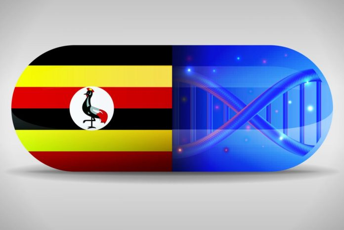 Presidente de Uganda vai usar Blockchain para Combater Medicamentos Falsificados