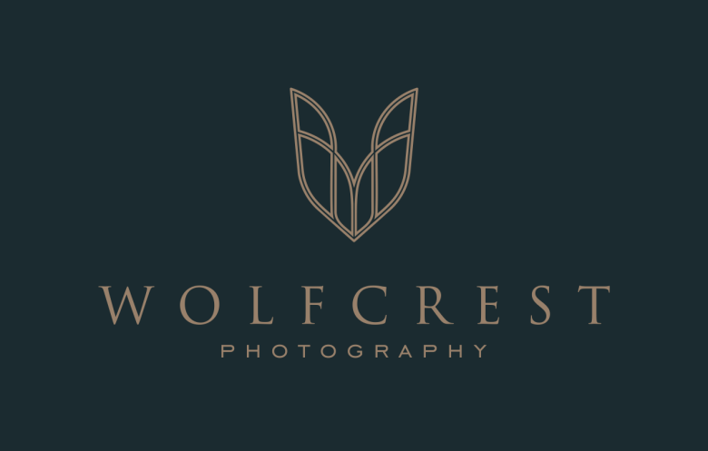 example for designing a logo that is classic