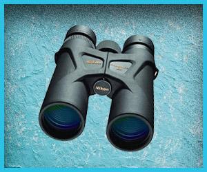 Best birding binoculars under 200