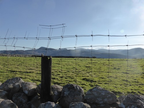 mountain view through wire fence grid