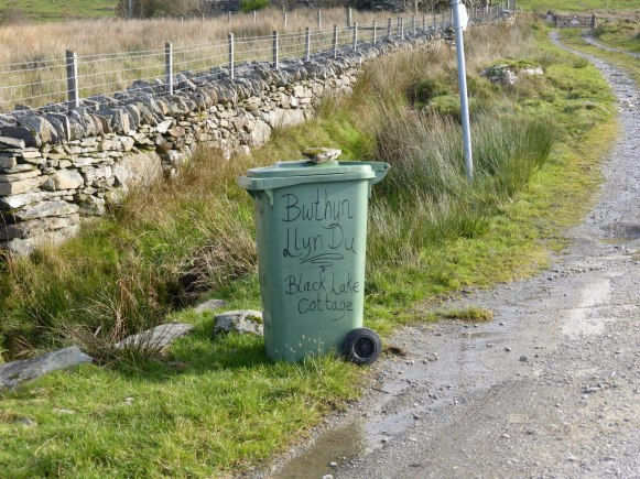 wheelie bin labelled with nice curly lettering