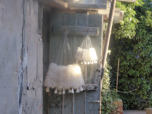 bottle brushes hanging on door
