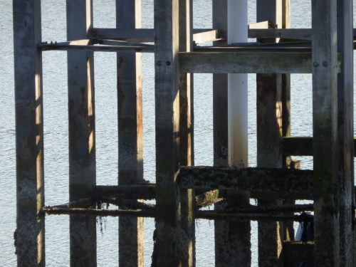 grid pattern of pier supports and shadows