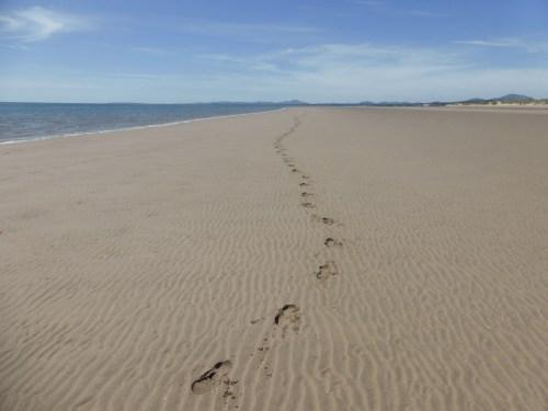 long backview, my footprints