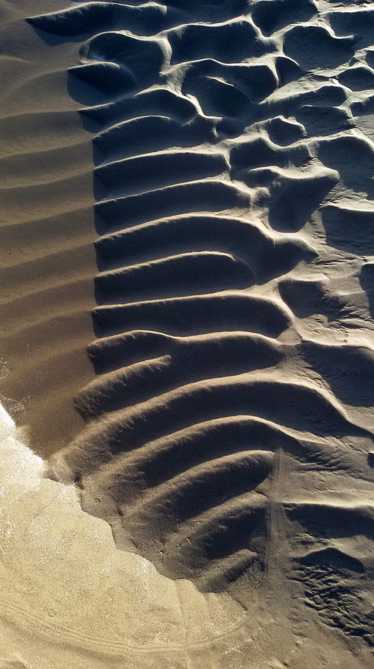 ribcage pattern in sand