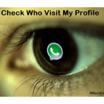How to Know Who Visited Your WhatsApp Profile Today