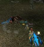 20071222_01.jpg