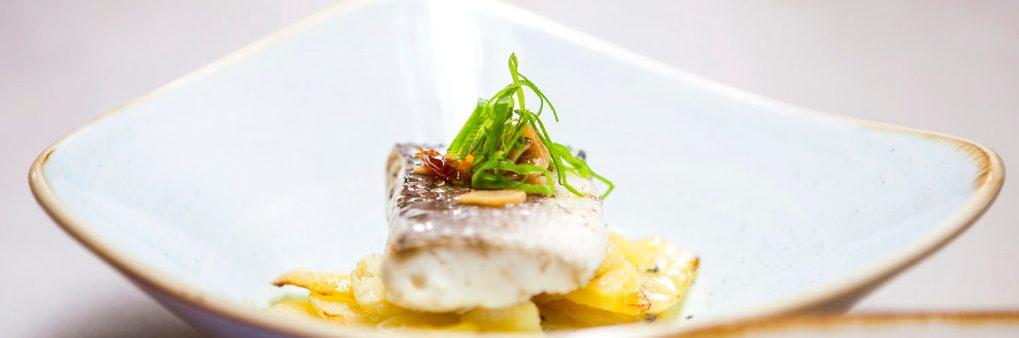 Bacalao de Islandia, pescado, fresco, emplatado perfecto, calidad,