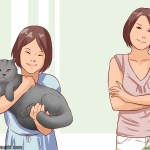 Fear Free Tips for Picking Up and Holding a Cat