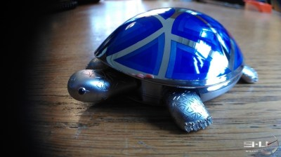 tortue_02