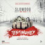 Slowdog - Testimony ft. Mr Raw & TJ