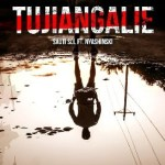 (Music) Sauti Sol X Nyashinki - Tujiangalie