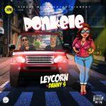 MP3 : Danny S X Leycorn - Ponkele