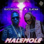 MP3: Guccimaneeko Ft. Zlatan - Malemole (Prod. Sarz)
