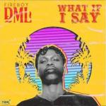 Lyrics: Fireboy DML - What If I Say