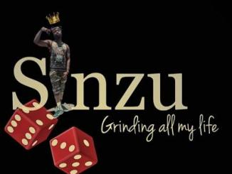 MP3: Sinzu - Grinding All My Life (Cover)