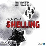 MP3: Yaa Pono - Shelling