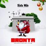 MP3: Shatta Wale - Bronya