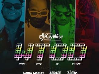 Lyrics: DJ Kaywise x Mayorkun, Naira Marley, Zlatan - What Type Of Dance