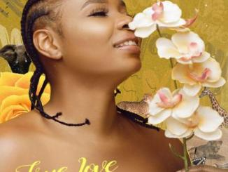 Yemi Alade - True Love (prod. Vtek)