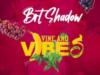 AUDIO + VIDEO: Brt Shadow - Vine And Vibes
