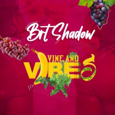 AUDIO + VIDEO: Brt Shadow - Vine And Vibes