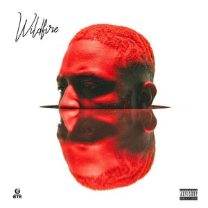 """FAST DOWNLOAD: PrettyBoy D-O — """"Wildfire"""" Full EP"""