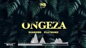 DOWNLOAD MP3: Diamond Platnumz – Ongeza