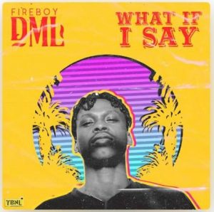 Download Instrumental:- Fireboy DML – What If I Say (Remake By Ace Soundz)