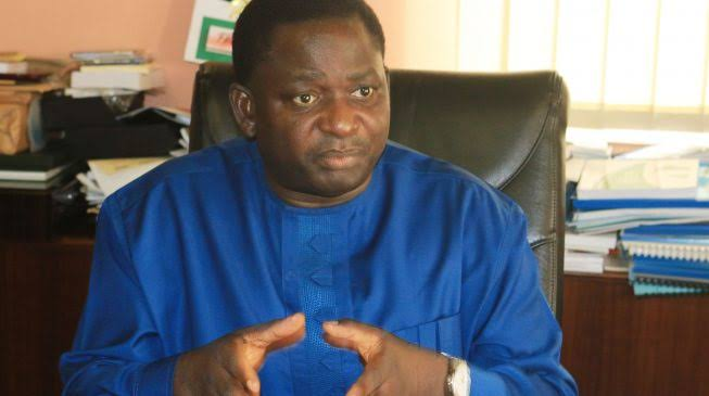 The Person Who Leaked Buhari's Speech Caught – Femi Adesina