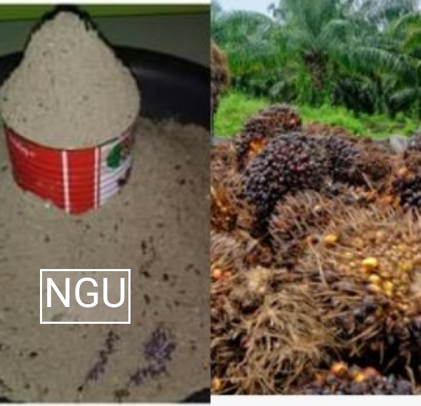 How to Produce or Make Homemade Potash (Ngu)