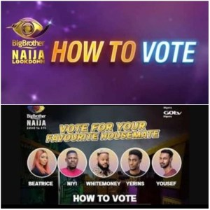 How To Vote On BBNaija 2021 – Vote  For Your Favorite Housemate