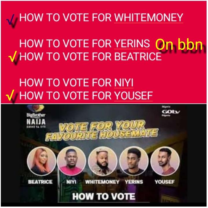 How To Vote On BBNaija 2021