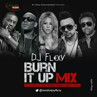 MIXTAPE: DJ FLEXY- BURN IT UP MIX ft. R-Kelly, Usher, Akon 50cent, Sean Paul