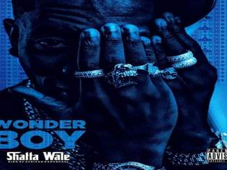 Download Mp3: Shatta Wale - Bad Man